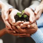 lead nurturing B2B